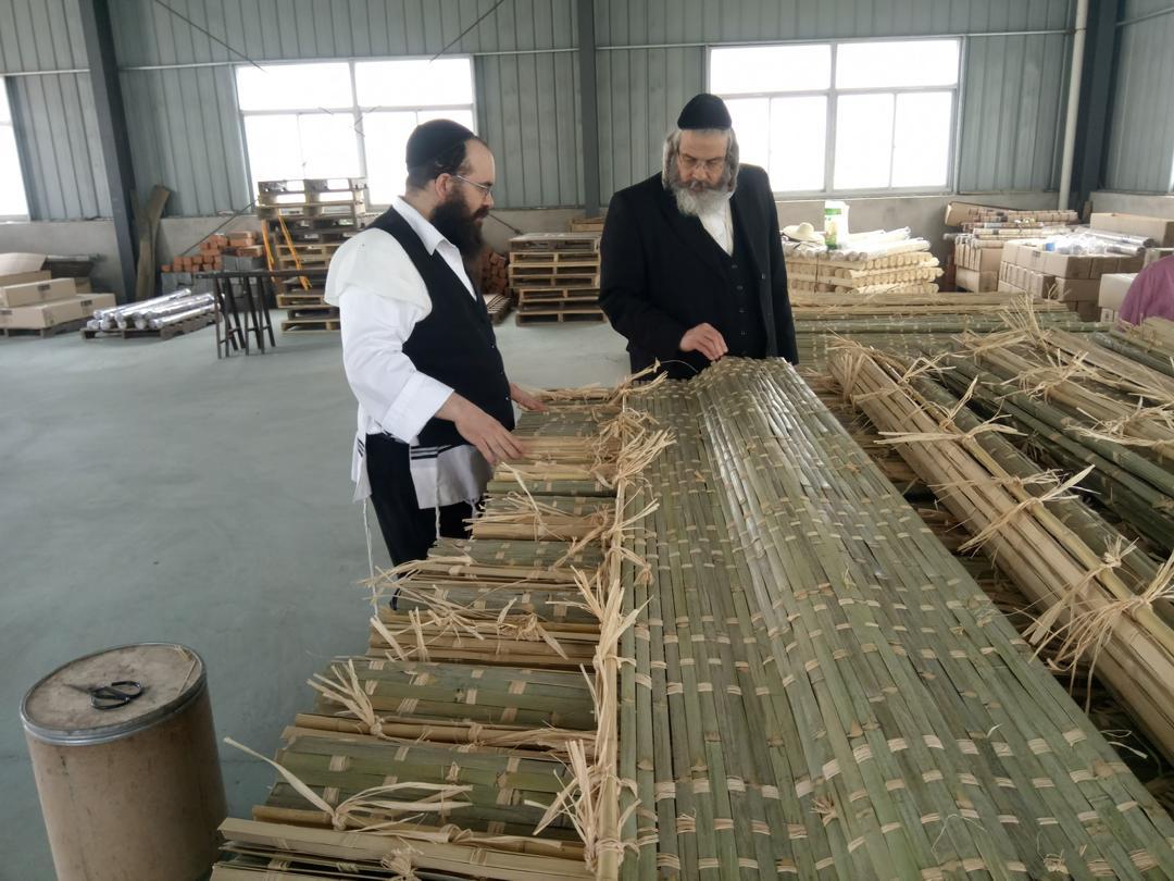 Rabbi checking the bamboo mats